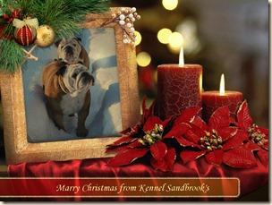 Julkort 3