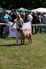 2011-06-02-BMCN-Clubmatch-2011-113302.jpg