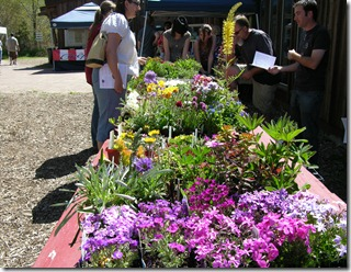 EarthDayPlantSale