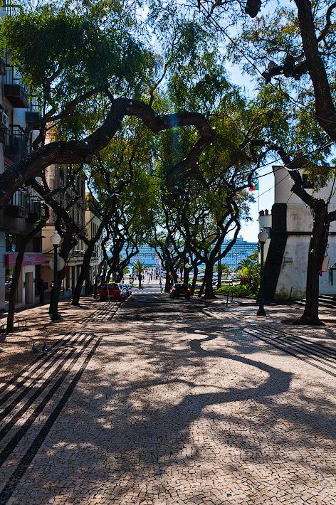 25. Фотопрогулка по улицам города. Улочки. Фуншал. Мадейра. Португалия. Круиз на Costa Concordia.