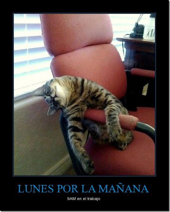 CR_693378_lunes_por_la_mantildeana
