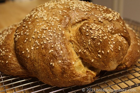 apple-honey-whole-grain-challah_0691
