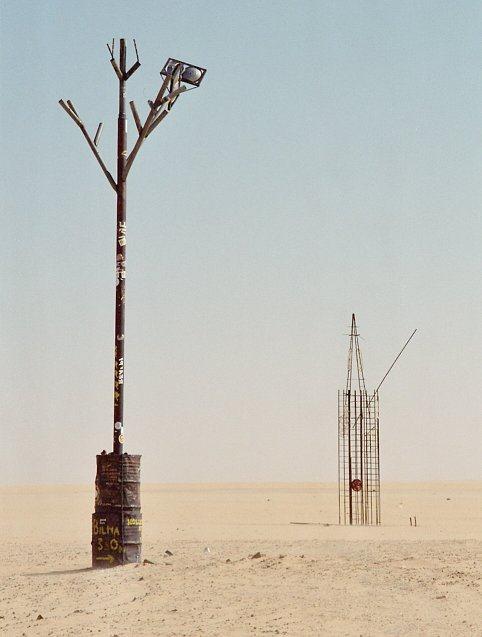 tree-of-tenere-8
