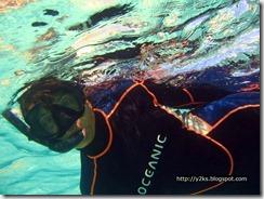 Snorkeling all'Isola dei Conigli - Lampedusa