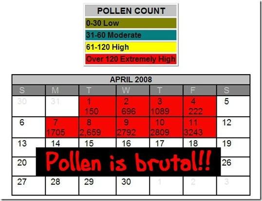 pollen count 4-11-08 1