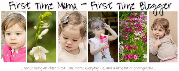 First Time Mama Blog Header