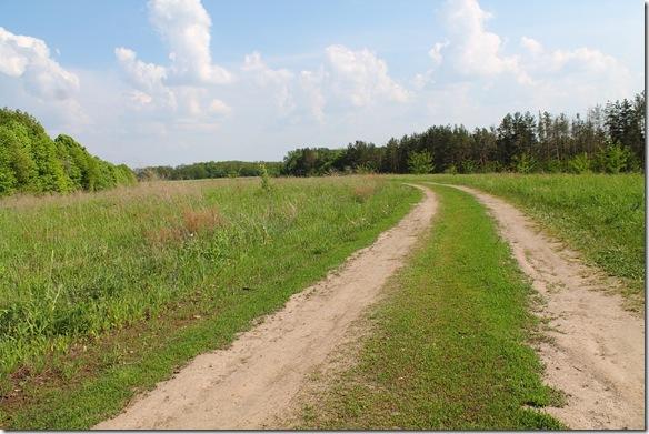 Дорога на Витачів