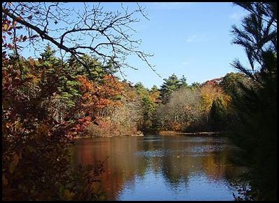 fall-5_thumb2