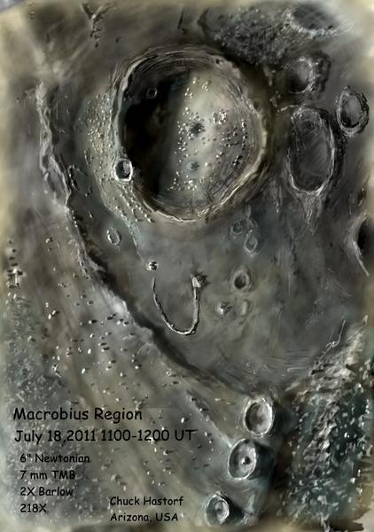 Macrobius July 2011JPEG.jpg