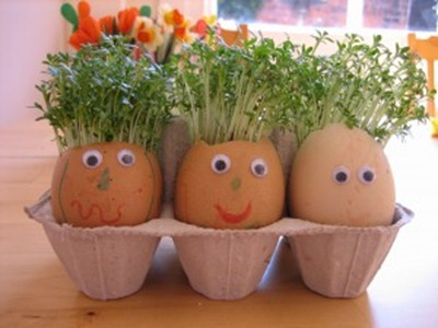 Eggsheads with Cress Hair from Nurturestore