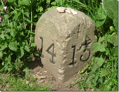 milestone at springwood haven