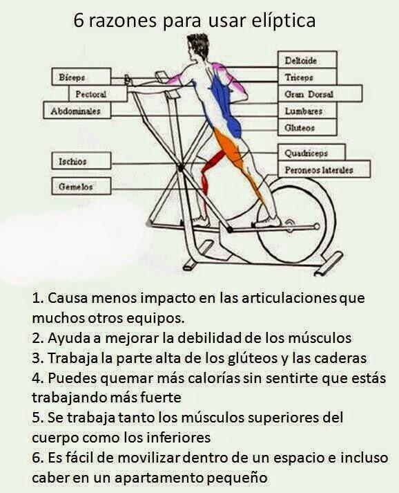 Beneficios del eliptico dietas de nutricion y alimentos - Beneficios de la bici eliptica ...