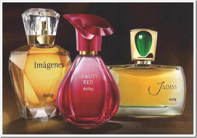 Mundo de aromas