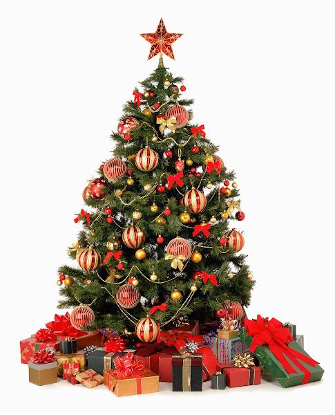 ChristmasTree Christmas Tree Pics