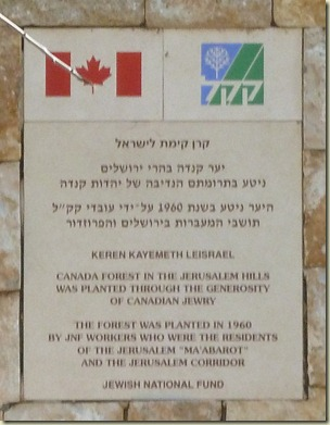 2012-01-15 Jerusalem Hills 023