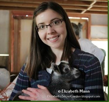 16-1-goat profile pic