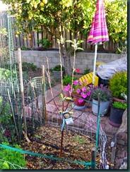 Garden Folly IV, netting 003
