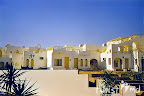 Фото 5 Halomy Sharm
