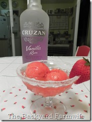 sorbet daiquiri - The Backyard Farmwife