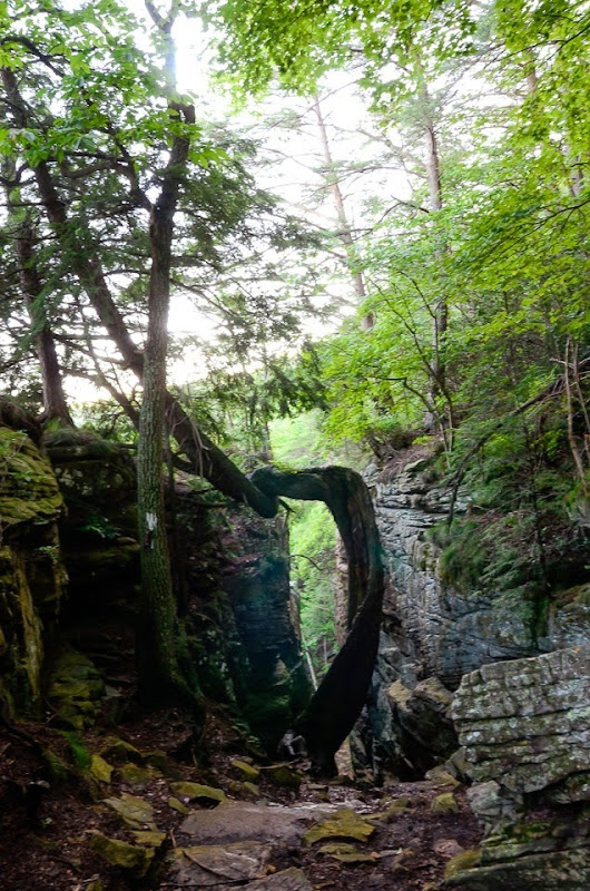 s stone door june visit-11321