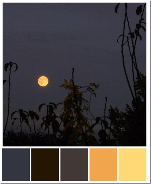 maan-kleurenbalk