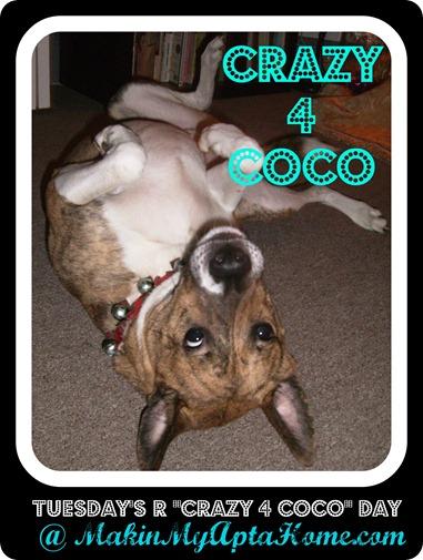 crazy 4 coco log0