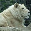 Philadelphia - Philadelphia Zoo