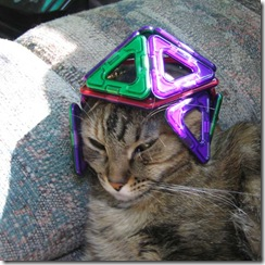 Dave-cat-Magformers-3