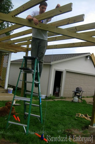 Adding the beams to the pergola