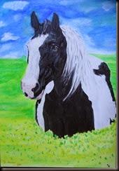 Horse010
