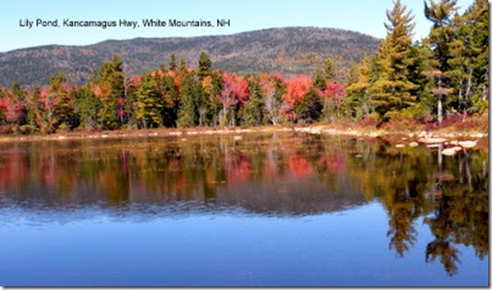 Lily Pond, Kancamagus Hwy, White Mountains, NH