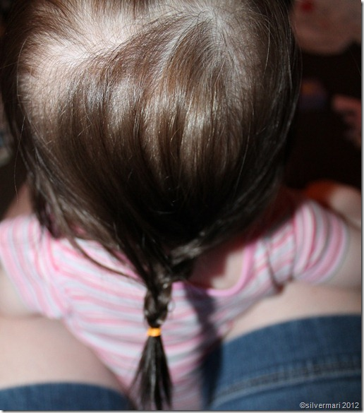 20120813_X_HairBraid_sm