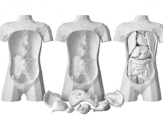 órgãos de papel (4)