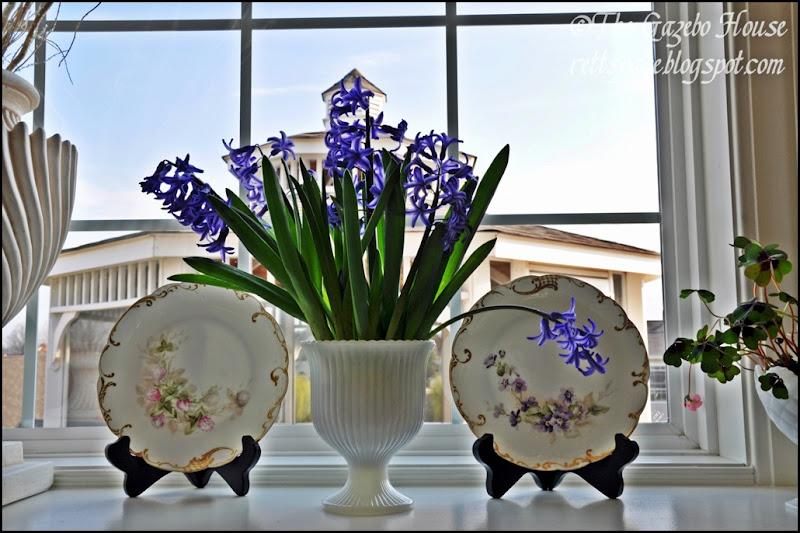 Liliacs, daffodills, cyclamen 035