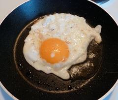 2013-egg1
