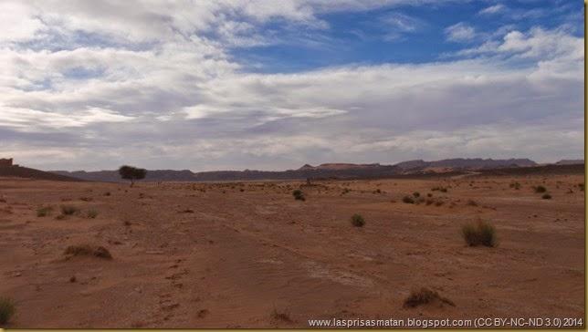 Desierto-320