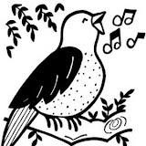 bird-sings.jpg