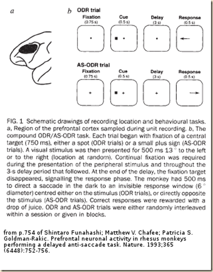 Funahashi 1993 fig1