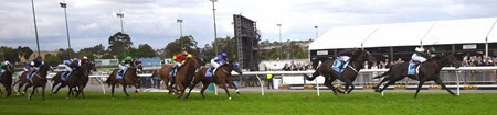 cox plate_straight _finish 1