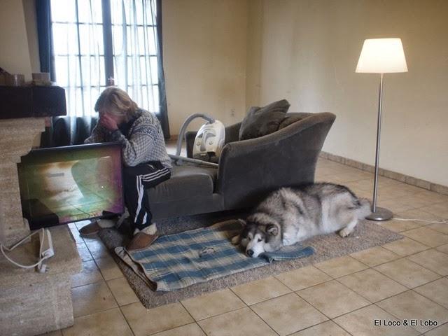 Everyone is sad: Gustav, Munson and the vacuum cleaner