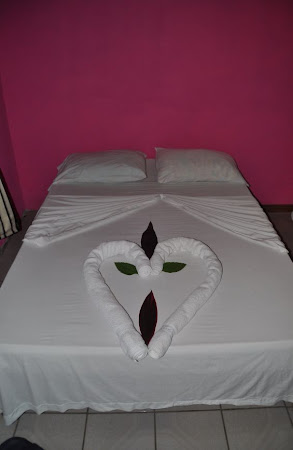 Cazare Costa Rica: Hotel El Icaco Tortuguero