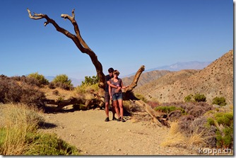 110928 Joshua Tree NP (6)