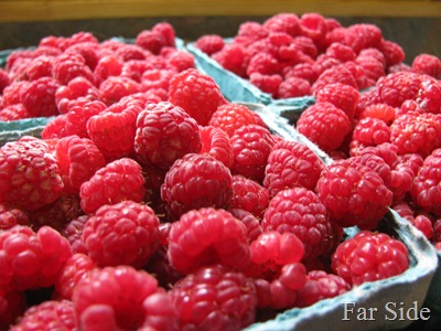 The berries
