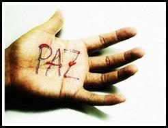 CAIC Paz