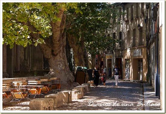 Avignon-39