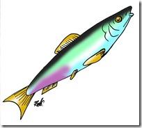 peces clipart blogcolorear (34)