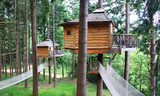 Cabanes als arbres 2.JPG