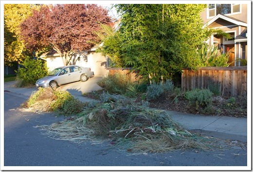 121104_yardwaste1