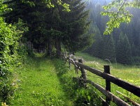 Pot mimo planine Praprotnice