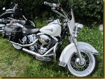 IMG_1488 Harley D